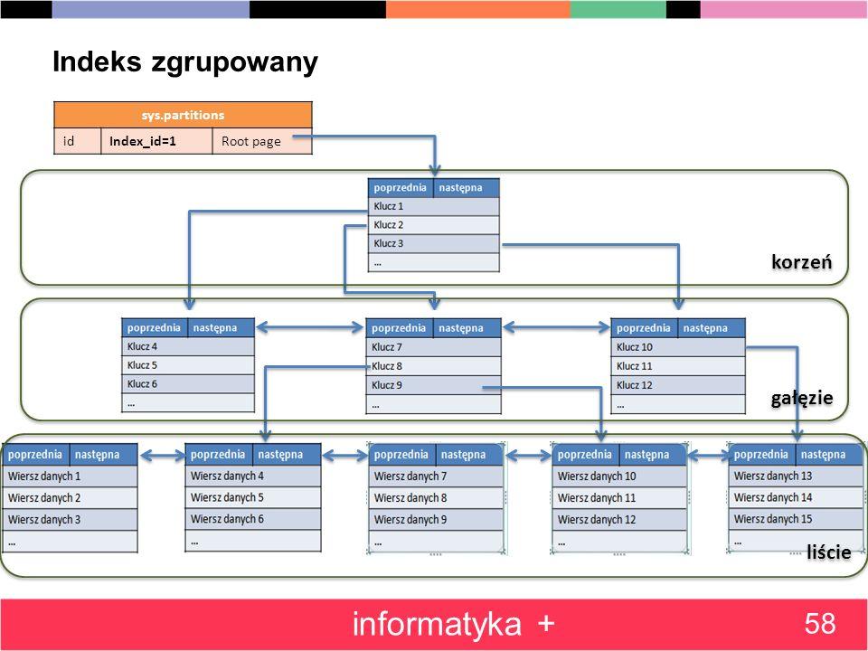informatyka + Indeks zgrupowany 58 korzeń gałęzie liście