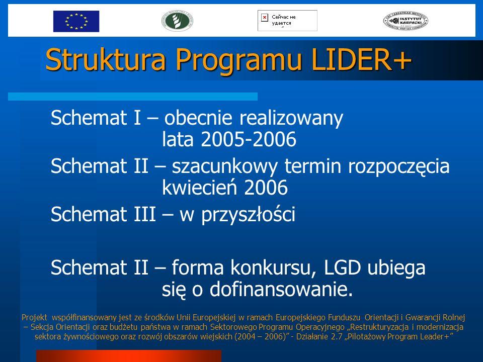 Struktura Programu LIDER+