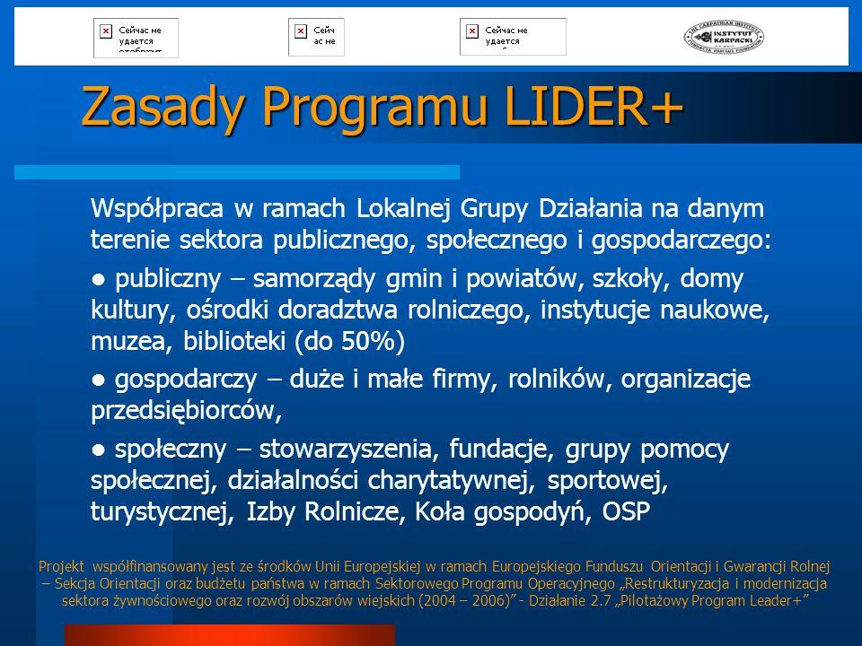 Zasady Programu LIDER+