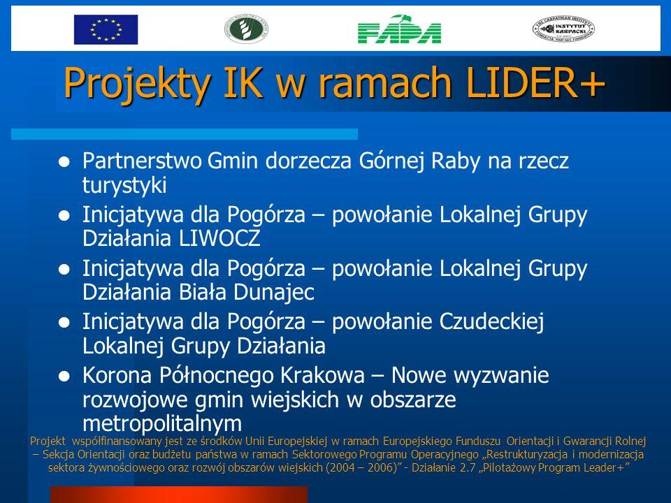 Projekty IK w ramach LIDER+