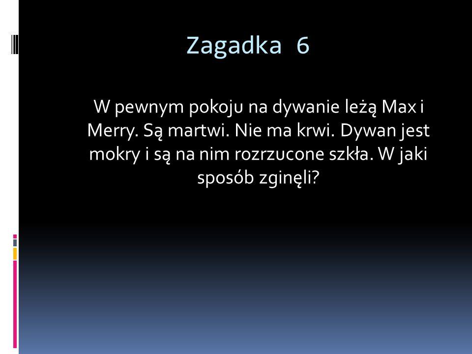 Zagadka 6