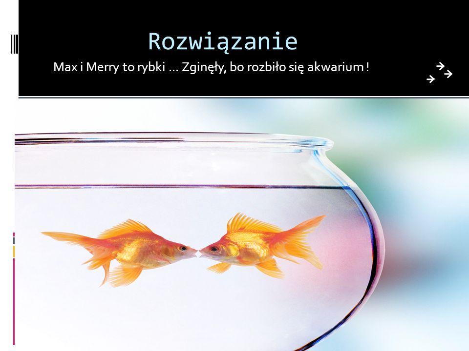 Rozwiązanie Max i Merry to rybki ... Zginęły, bo rozbiło się akwarium !