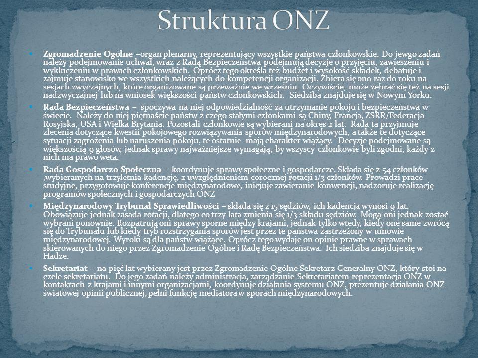 Struktura ONZ