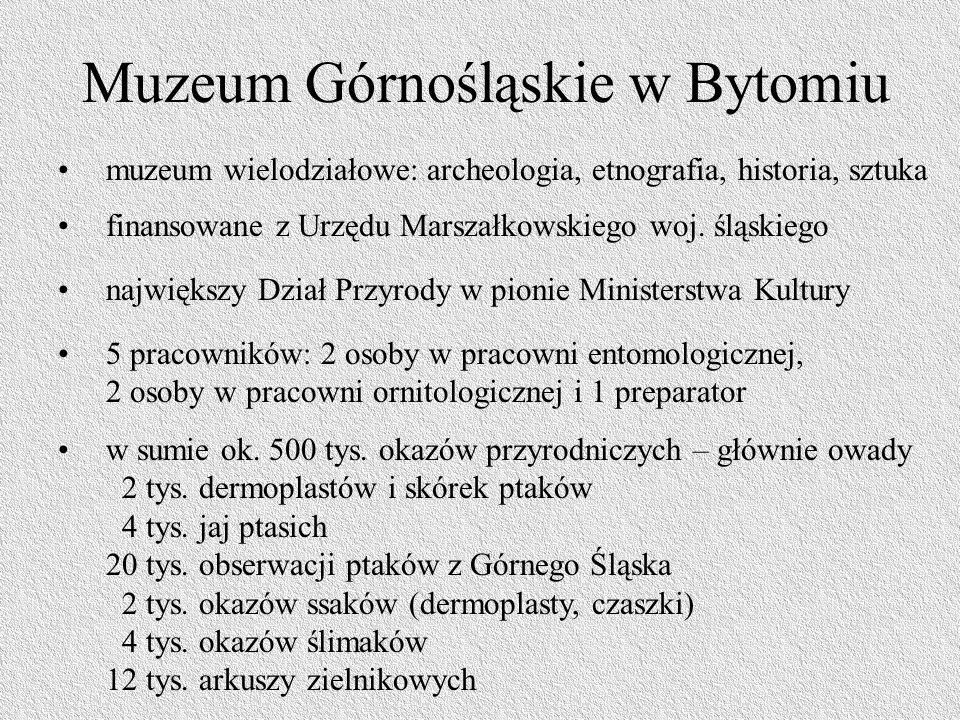 Muzeum Górnośląskie w Bytomiu