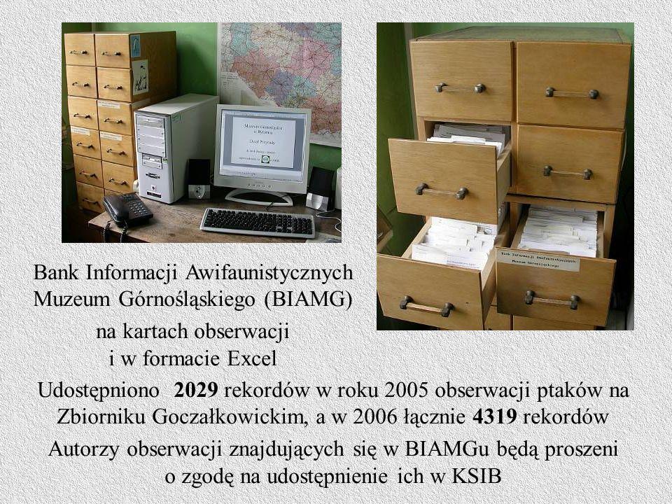 Bank Informacji Awifaunistycznych Muzeum Górnośląskiego (BIAMG)