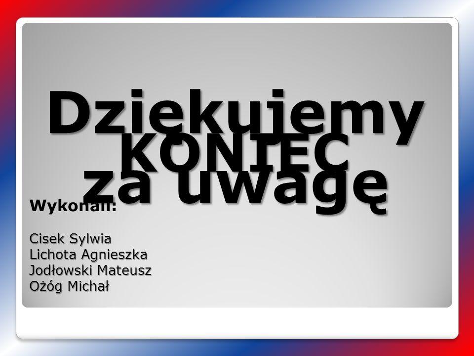 Dziękujemy za uwagę KONIEC Wykonali: Cisek Sylwia Lichota Agnieszka
