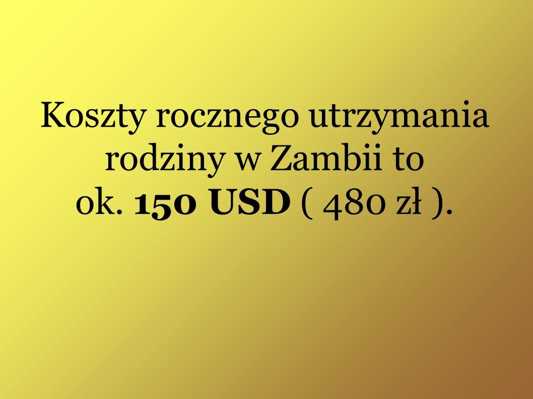 Koszty rocznego utrzymania rodziny w Zambii to ok. 150 USD ( 480 zł ).