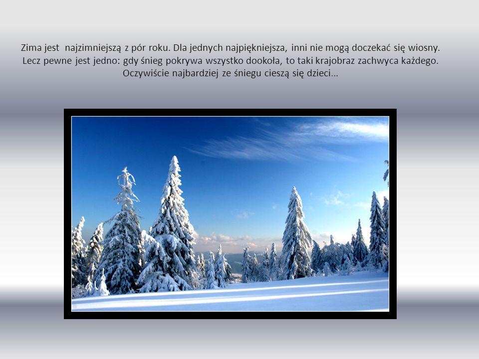 Zima jest najzimniejszą z pór roku