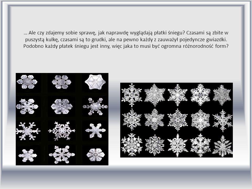 … Ale czy zdajemy sobie sprawę, jak naprawdę wyglądają płatki śniegu