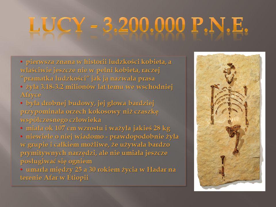 Lucy - 3.200.000 p.n.e.