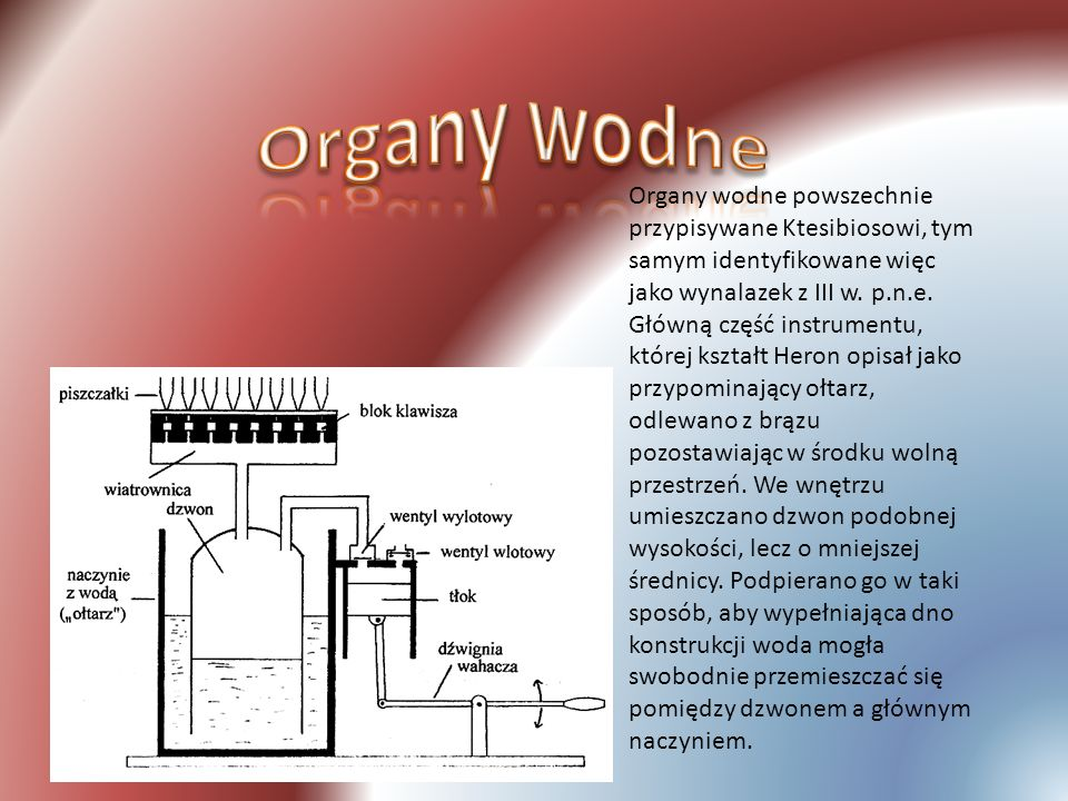 Organy wodne