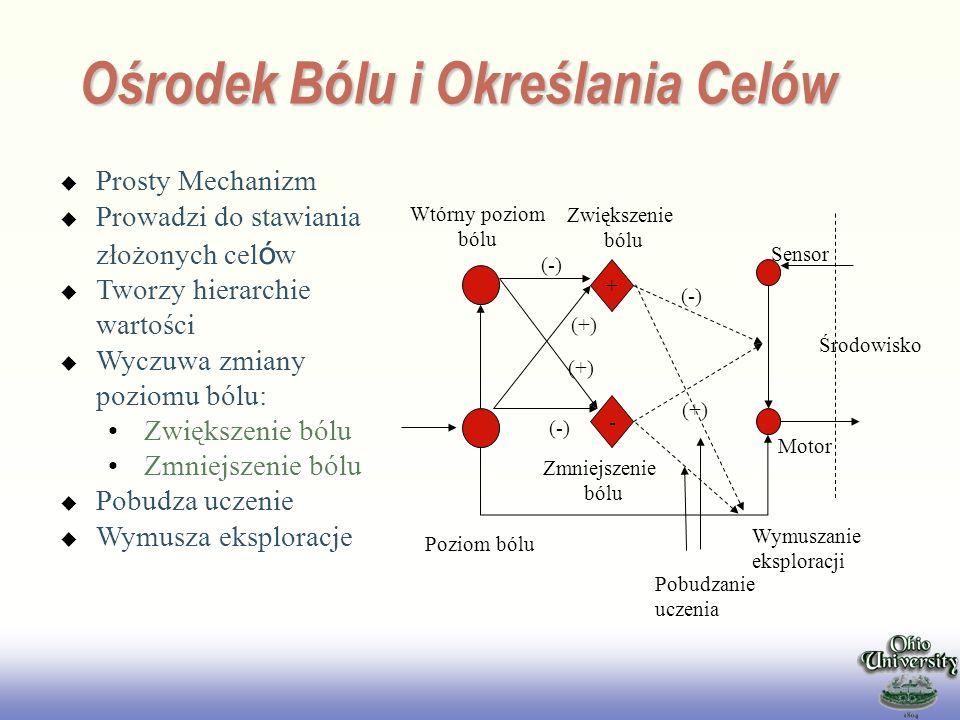 Ośrodek Bólu i Określania Celów