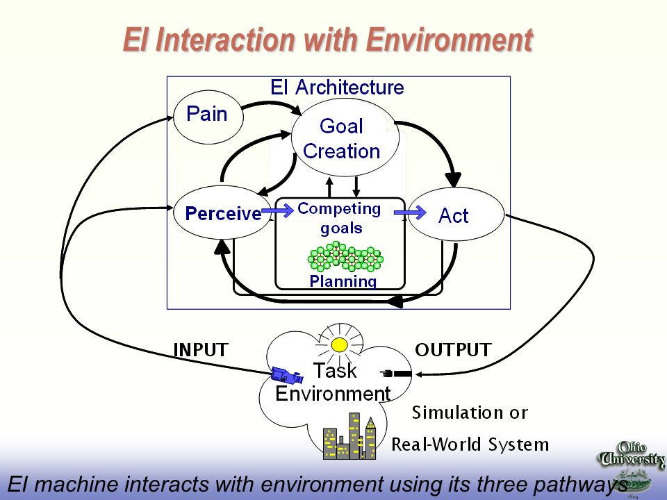 EI Interaction with Environment