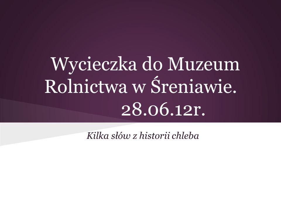 Wycieczka do Muzeum Rolnictwa w Śreniawie. 28.06.12r.