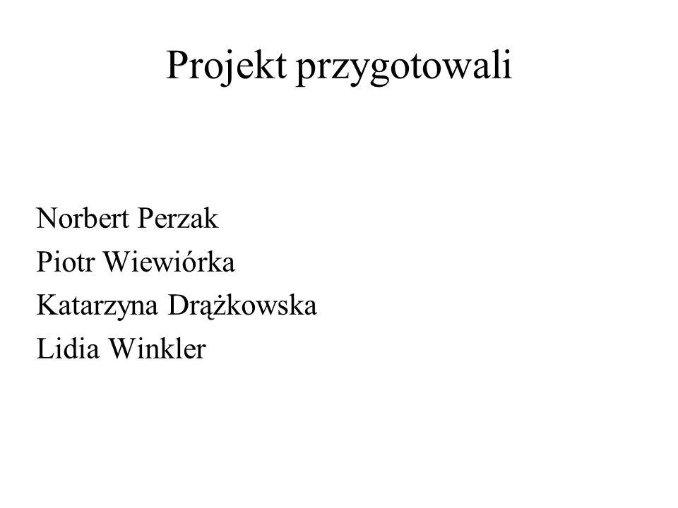 Projekt przygotowali Norbert Perzak Piotr Wiewiórka