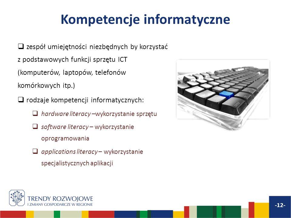 Kompetencje informatyczne