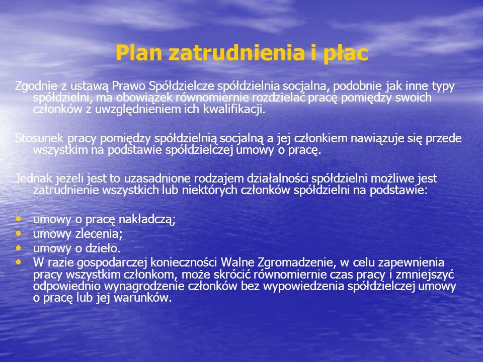 Plan zatrudnienia i płac