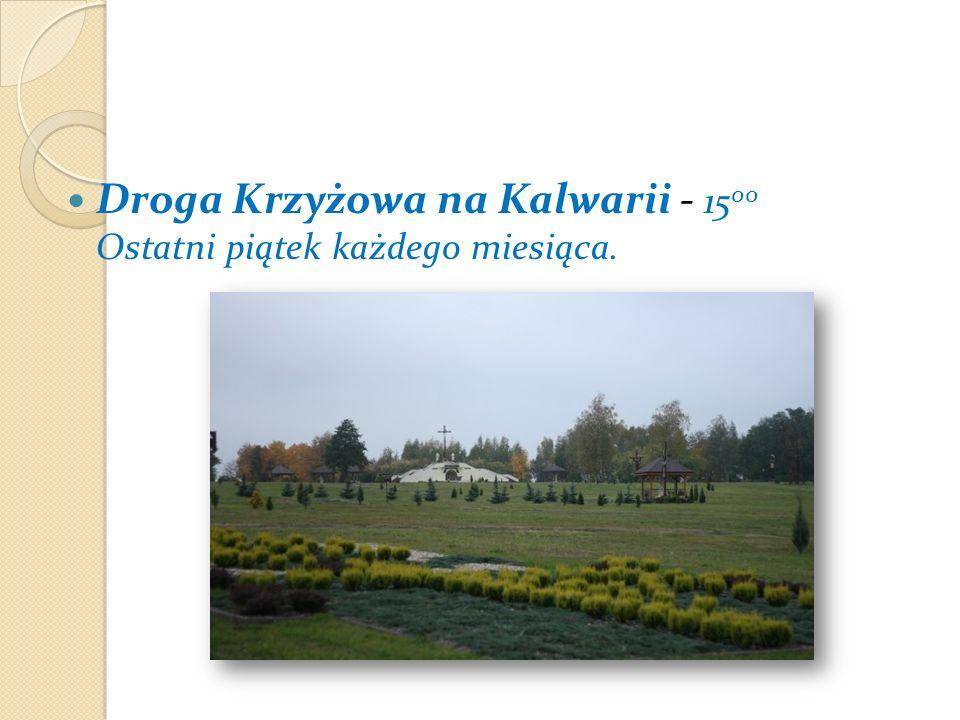 Droga Krzyżowa na Kalwarii - 1500 Ostatni piątek każdego miesiąca.