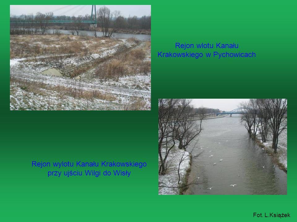 Rejon wlotu Kanału Krakowskiego w Pychowicach