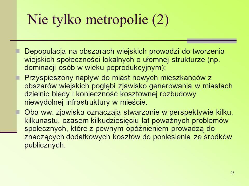 Nie tylko metropolie (2)