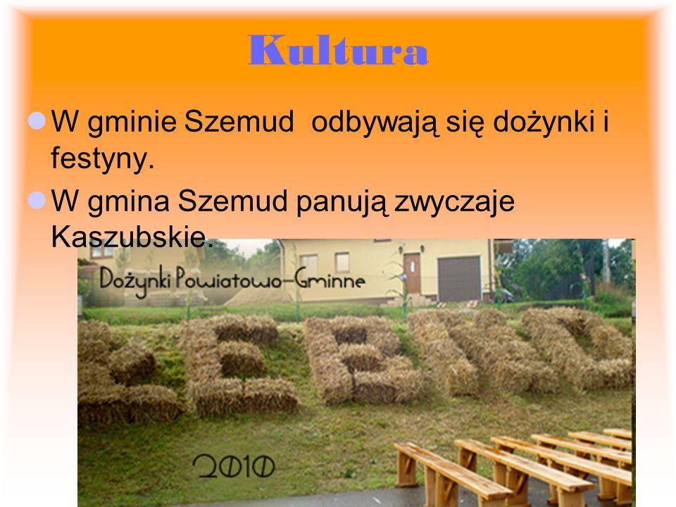 Kultura W gminie Szemud odbywają się dożynki i festyny.
