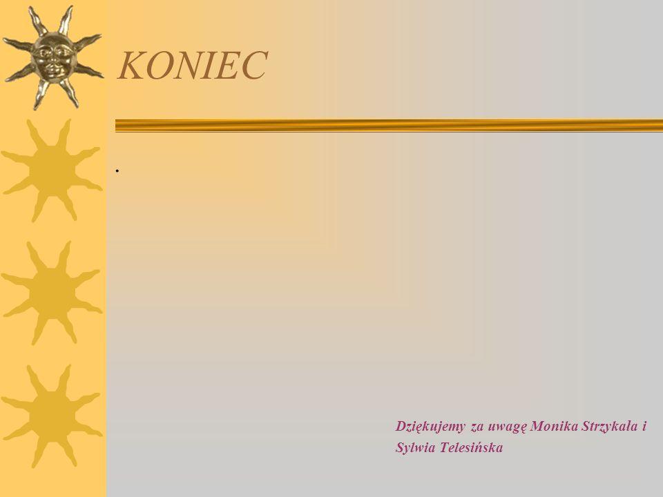 KONIEC . Dziękujemy za uwagę Monika Strzykała i Sylwia Telesińska