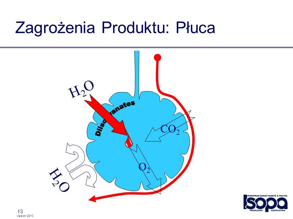 Zagrożenia Produktu: Płuca