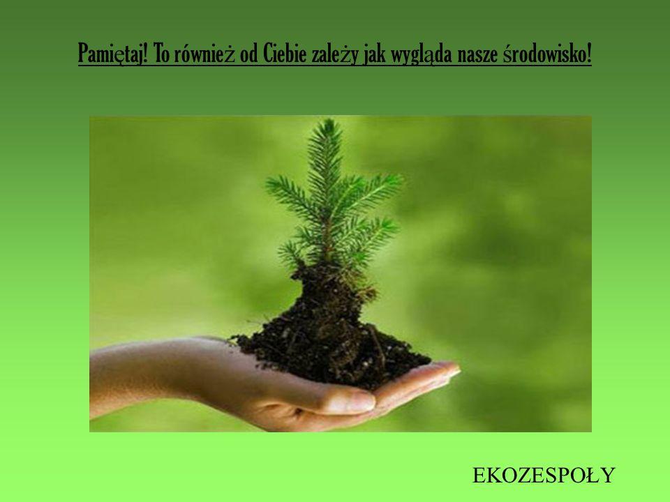 Pamiętaj! To również od Ciebie zależy jak wygląda nasze środowisko!
