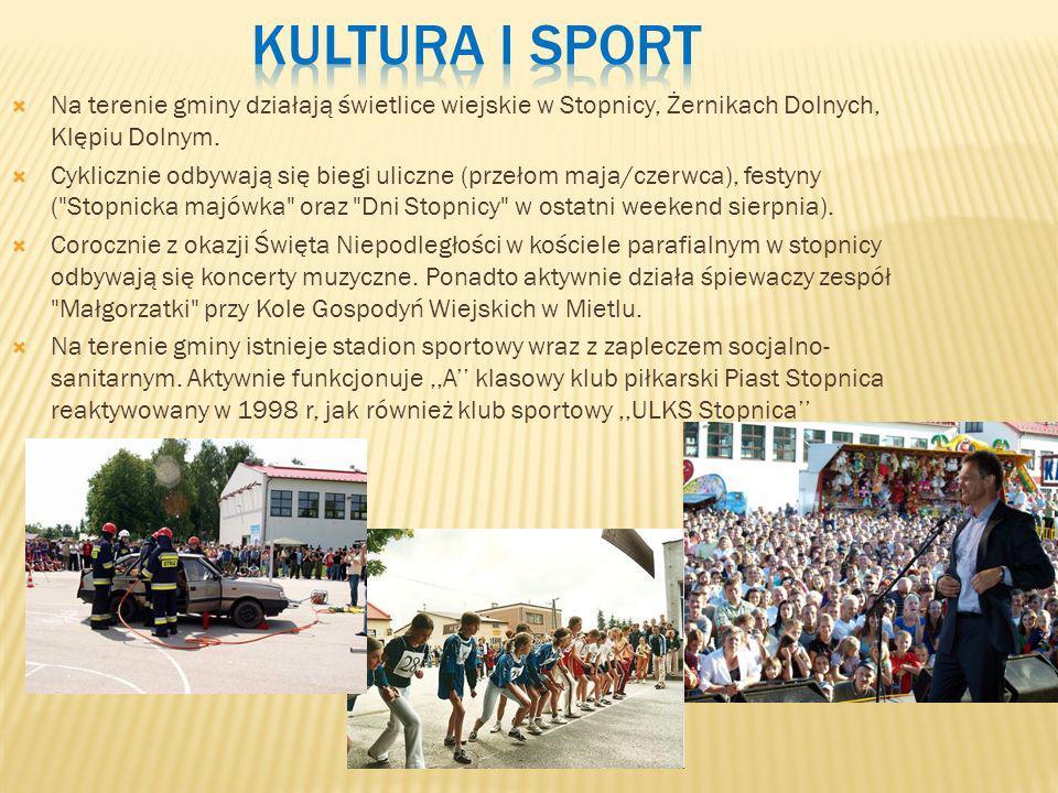 Kultura i sport Na terenie gminy działają świetlice wiejskie w Stopnicy, Żernikach Dolnych, Klępiu Dolnym.