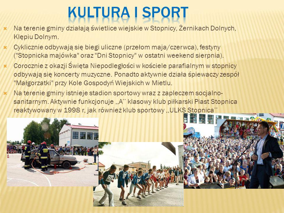 Kultura i sportNa terenie gminy działają świetlice wiejskie w Stopnicy, Żernikach Dolnych, Klępiu Dolnym.