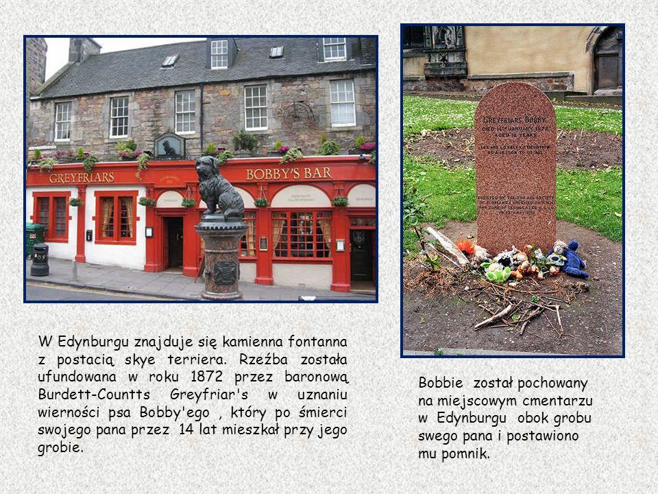 W Edynburgu znajduje się kamienna fontanna z postacią skye terriera