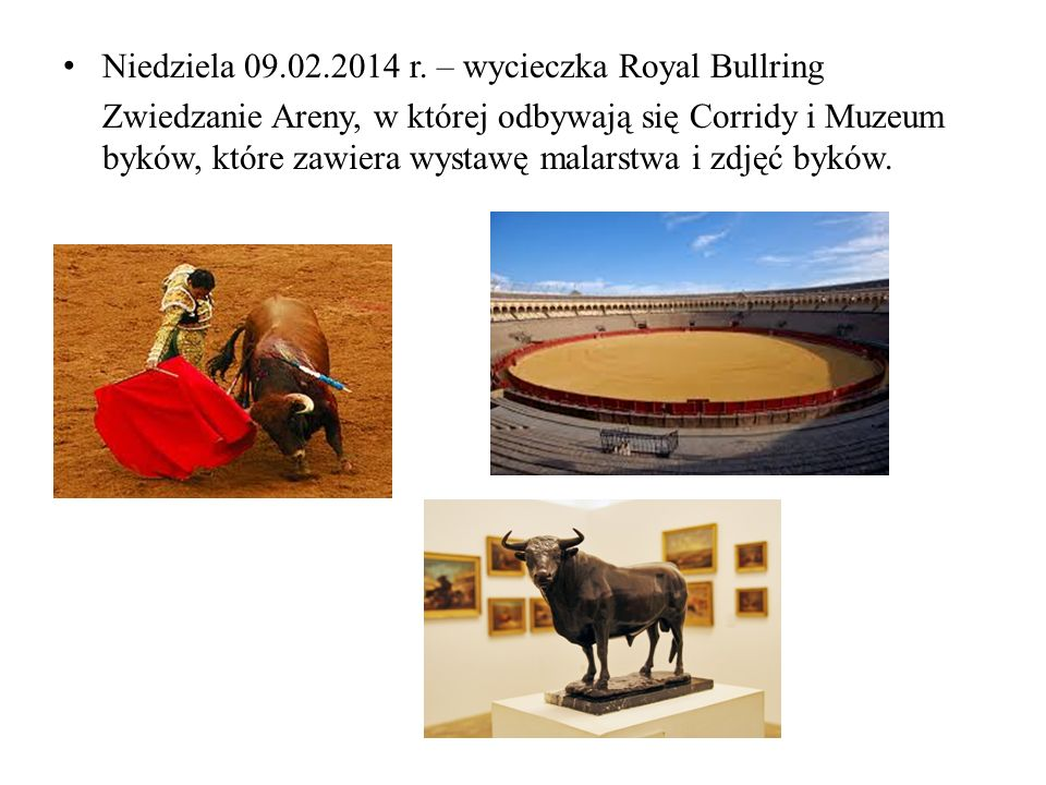 Niedziela 09.02.2014 r. – wycieczka Royal Bullring