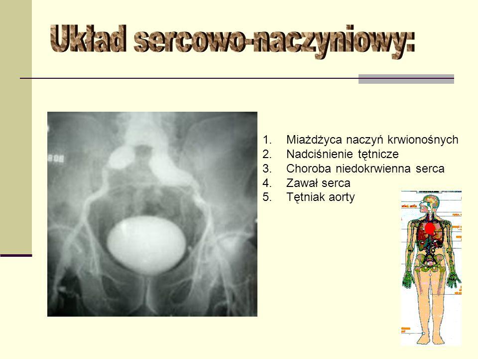Układ sercowo-naczyniowy: