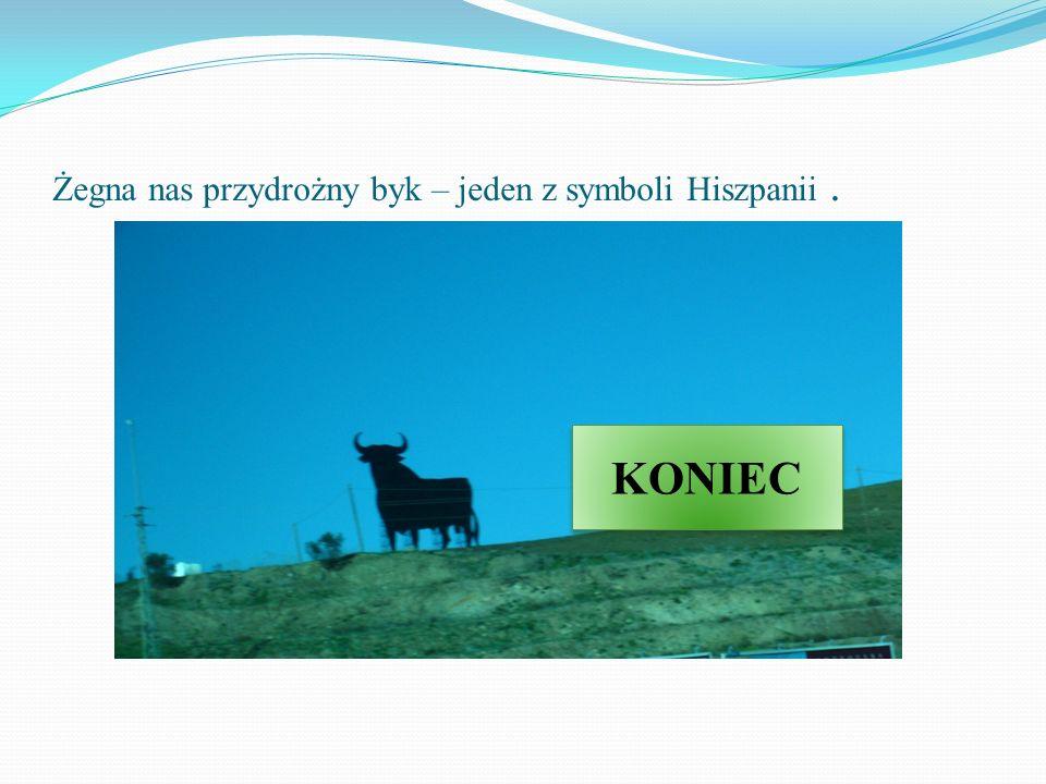 Żegna nas przydrożny byk – jeden z symboli Hiszpanii .