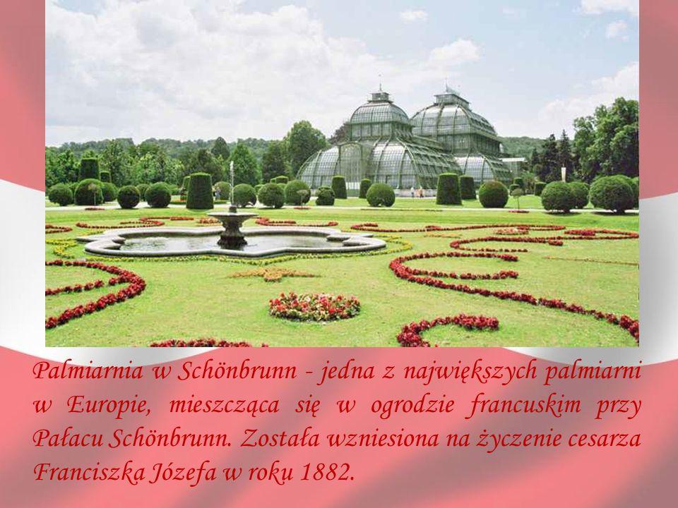 Palmiarnia w Schönbrunn - jedna z największych palmiarni w Europie, mieszcząca się w ogrodzie francuskim przy Pałacu Schönbrunn.