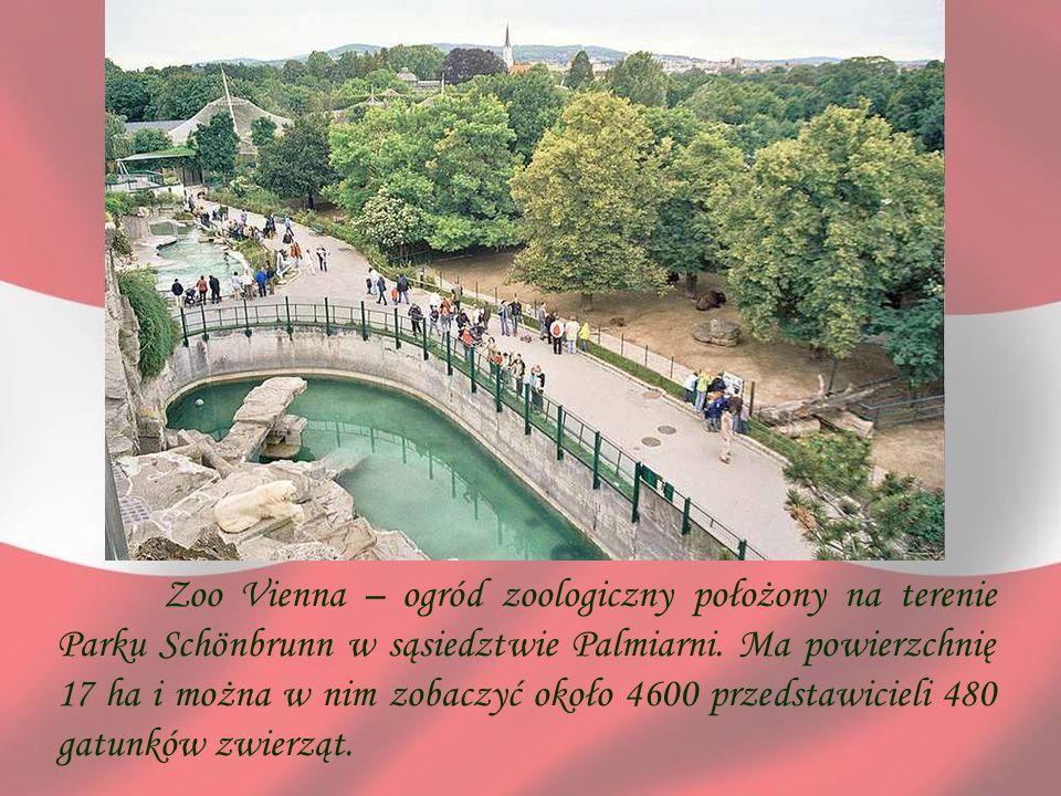 Zoo Vienna – ogród zoologiczny położony na terenie Parku Schönbrunn w sąsiedztwie Palmiarni.