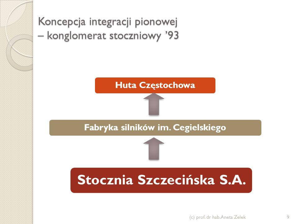 Koncepcja integracji pionowej – konglomerat stoczniowy '93