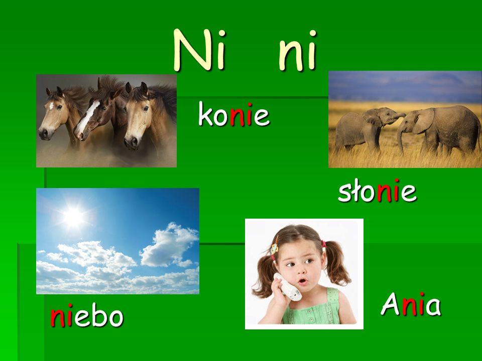 Ni ni konie słonie Ania niebo