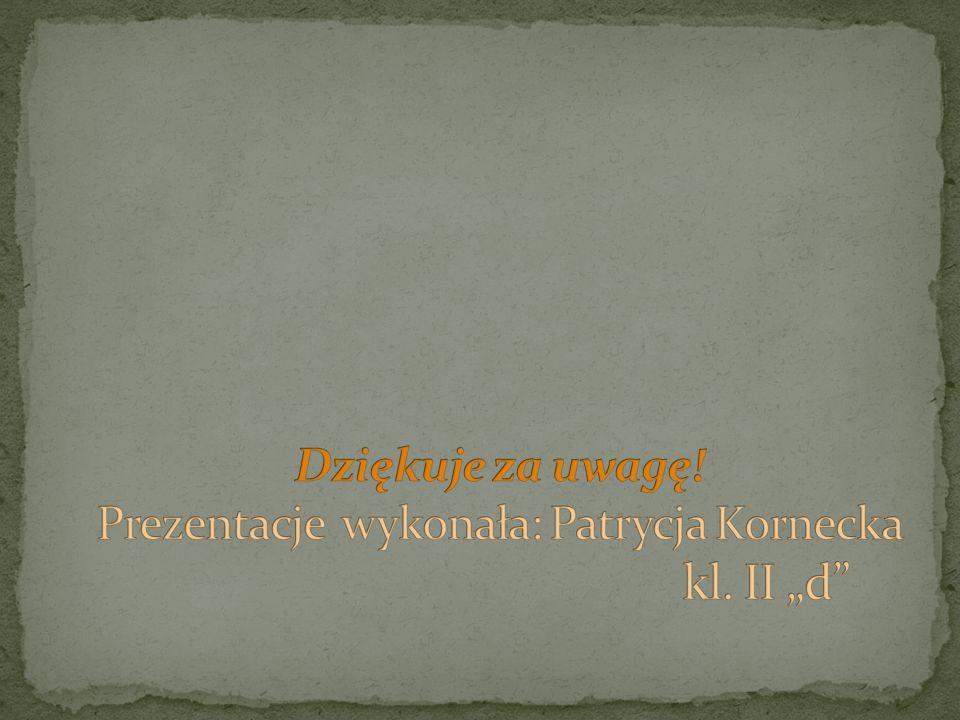 """Dziękuje za uwagę! Prezentacje wykonała: Patrycja Kornecka kl. II """"d"""