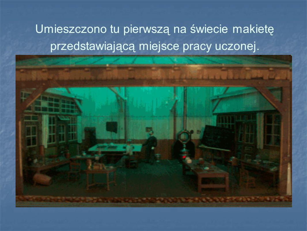 Umieszczono tu pierwszą na świecie makietę przedstawiającą miejsce pracy uczonej.