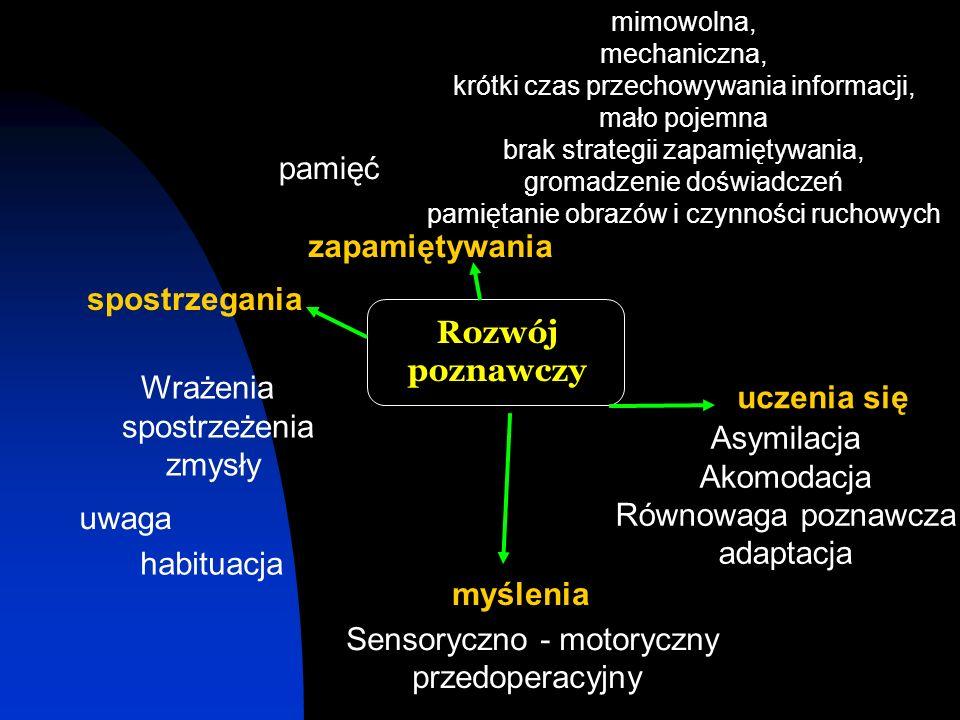 Sensoryczno - motoryczny przedoperacyjny