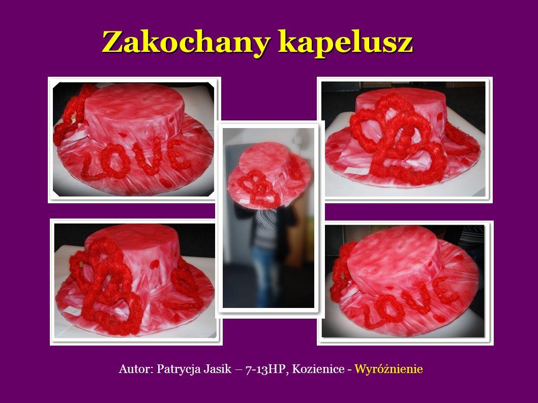 Autor: Patrycja Jasik – 7-13HP, Kozienice - Wyróżnienie
