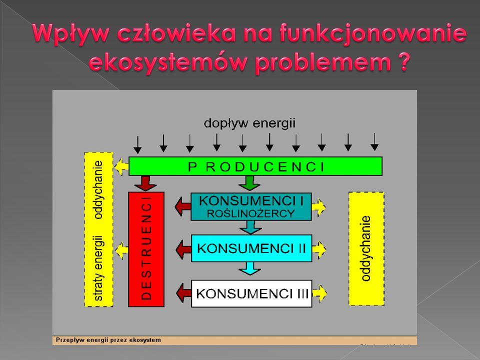 Wpływ człowieka na funkcjonowanie ekosystemów problemem