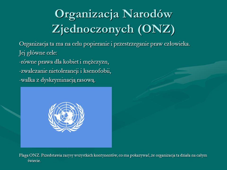 Organizacja Narodów Zjednoczonych (ONZ)