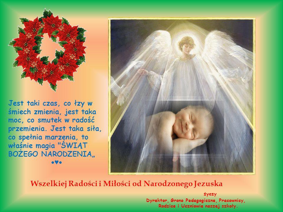 Wszelkiej Radości i Miłości od Narodzonego Jezuska życzy