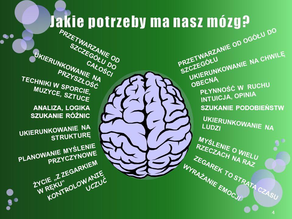 Jakie potrzeby ma nasz mózg