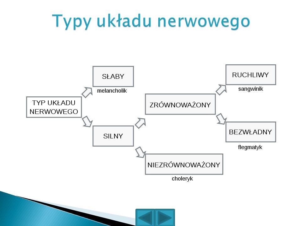 Typy układu nerwowego