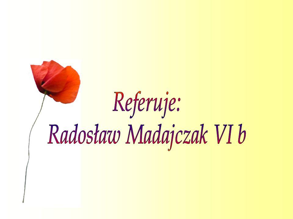 Radosław Madajczak VI b