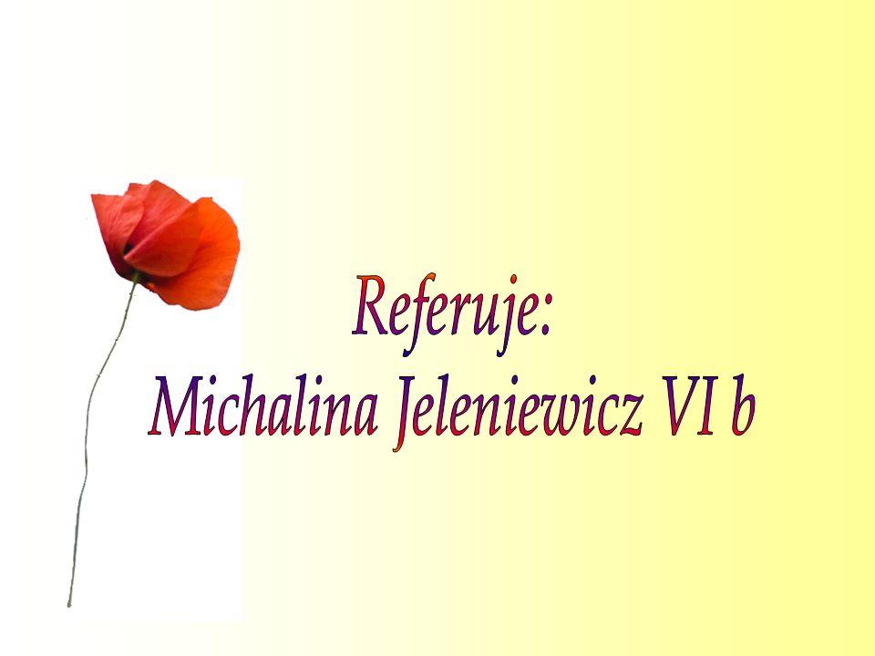 Michalina Jeleniewicz VI b