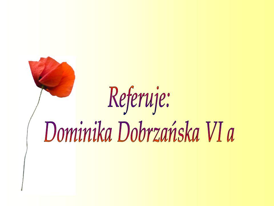 Dominika Dobrzańska VI a